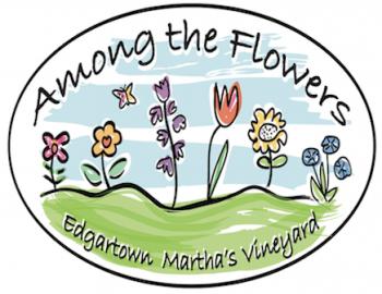 Martha S Vineyard Activities Beaches And Dining Martha S
