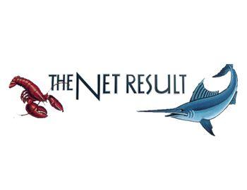 The Net Result Logo