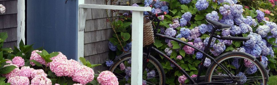 Bicycle in front of Martha's Vineyard house